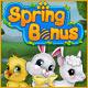 Spring Bonus