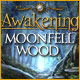 Awakening: Moonfell Wood - Mac