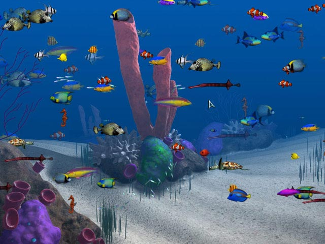 Game screenshot 2 Big Kahuna Reef