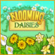 Blooming Daisies - Mac