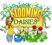Blooming Daisies