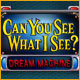 Can You See What I See? Dream Machine