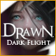 Download Drawn: Dark Flight ?? game