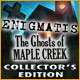 free download Enigmatis: The Ghosts of Maple Creek Collector's Edition game