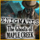 enigmatis the ghosts of maple creek 80x80 2 jeux  moins de 3,00 ce mercredi 17 octobre