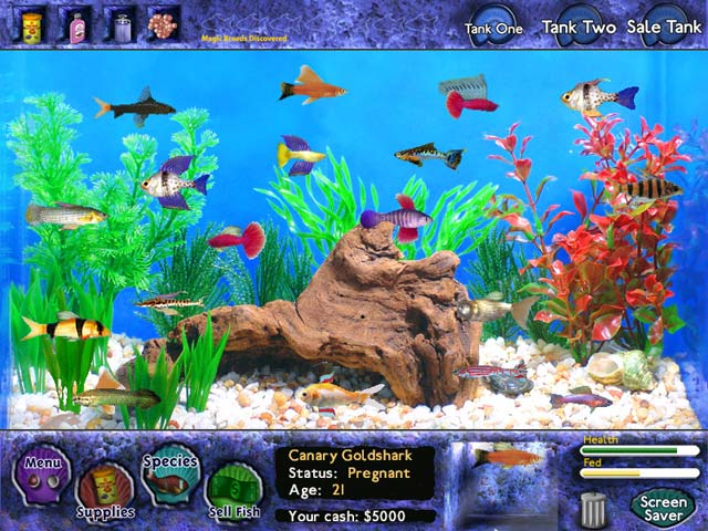 Play fish tycoon online games big fish for Order fish online