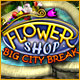 Flower Shop - Big City Break