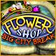free download Flower Shop: Big City Break game