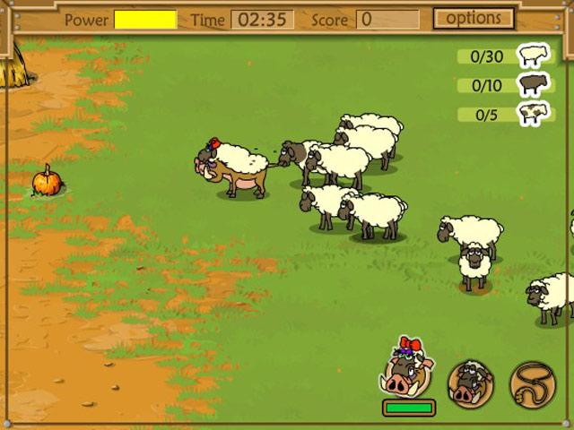 Kaban: Sheep