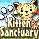 free download Kitten Sanctuary game
