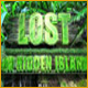 Lost on Hidden Island - Online
