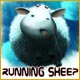 Running Sheep - Mac