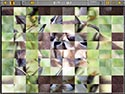 Sliders and Other Square Jigsaw Puzzles Screenshot-3