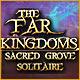 PC játék: Kártya és táblajátékok - The Far Kingdoms: Sacred Grove Solitaire