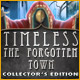Timeless: The Forgotten Town Collector's Edition