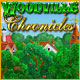 Woodville Chronicles - Online