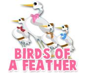 Característica De Pantalla Del Juego Birds of a Feather