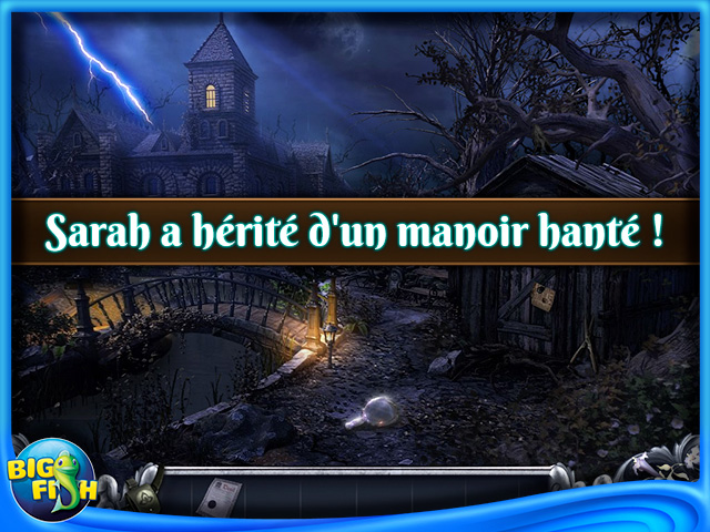 Capture d'écran de Haunted Past: Echos d'un Autre Monde Edition Collector