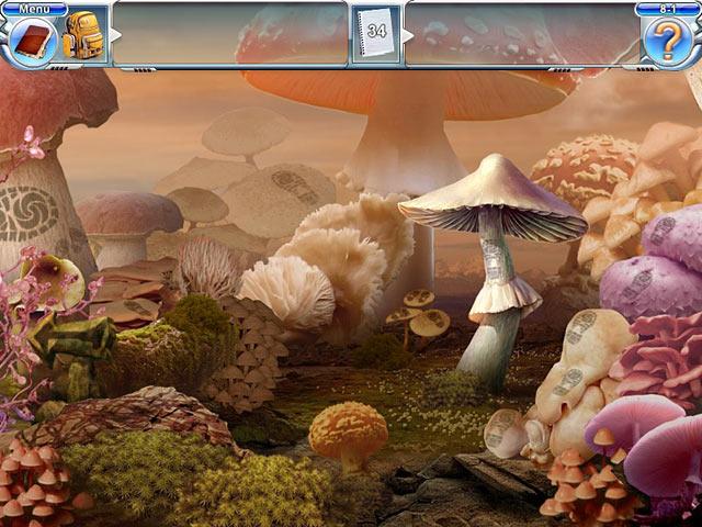 Vidéo de Mushroom Age