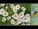 1. Pixel Art 4 jeu capture d'écran