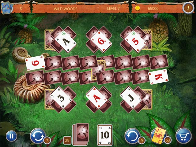 Solitaire Ted et P.E.T. img