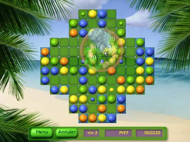 Capture D'écran Du Jeu 2 Tropical Puzzle