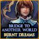 別世界への橋:燃え尽きた夢