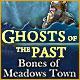 ゴースト・オブ・ザ・パスト:メドウズタウンの亡霊