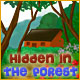 Hidden in the Forest