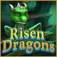 ライズン ドラゴン