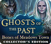 Feature Screenshot Spel Ghosts of the Past: Bones of Meadows Town Collector's Edition